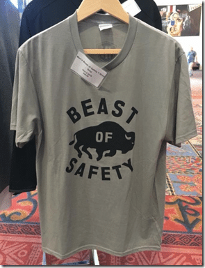 beast of safety